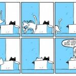 Miau - Interior