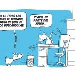 perros-vs-gatos1